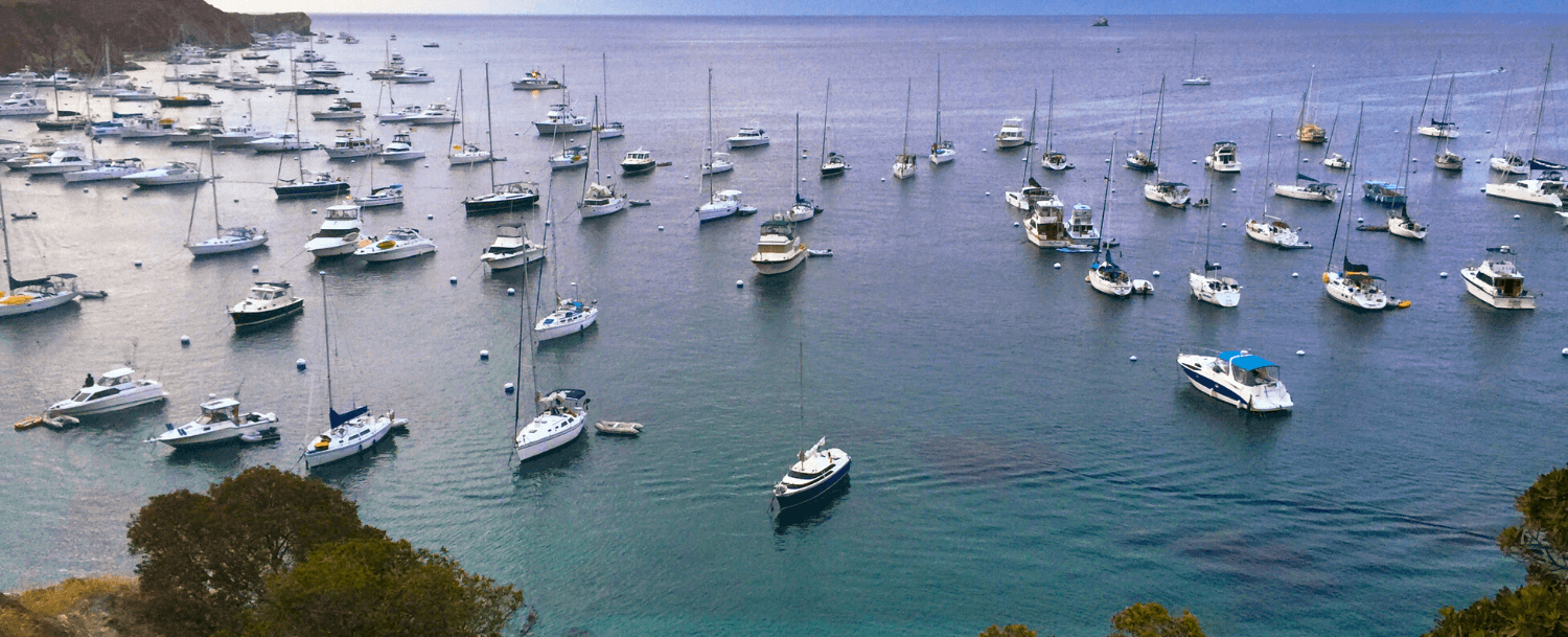 Boats at Catalina Island