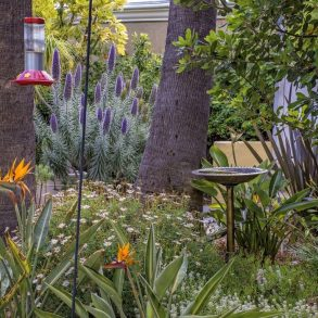 Avalon Hotel - Gardens with birdfeeder